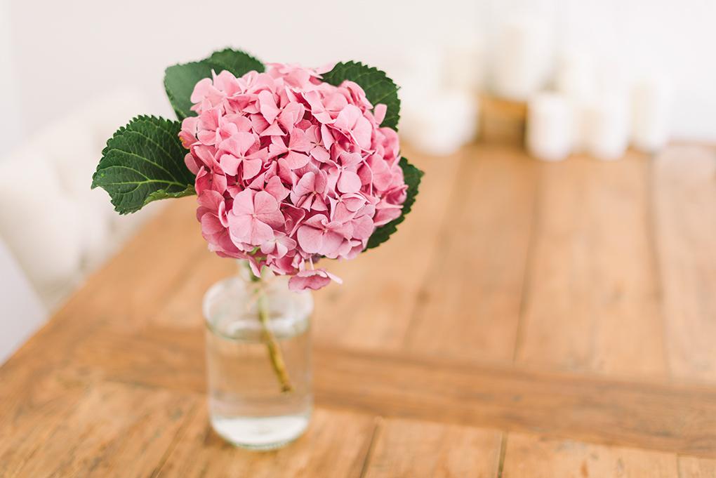 1 Flower 3 Ways Hydrangeas Alice S Table