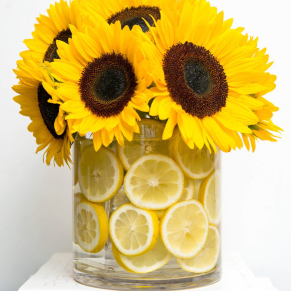 Beyond the Blooms: How to Fill Your Vase