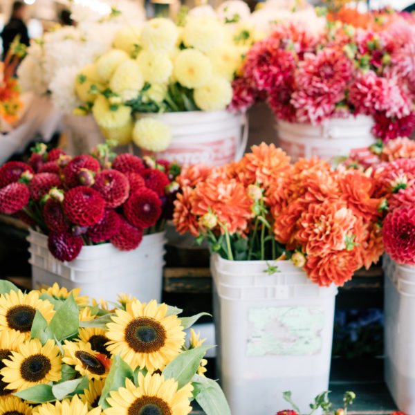 Your Go-to Guide For Farmer's Market Flowers