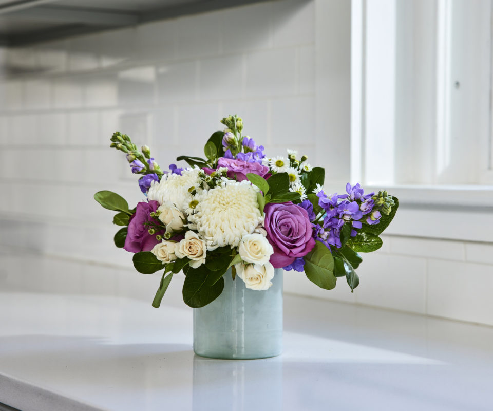 Blooming in Violet
